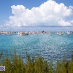 Mangrove Bay Raft Up Bermuda, August 5 2018-6090