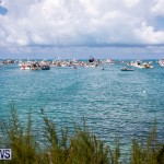 Mangrove Bay Raft Up Bermuda, August 5 2018-6096