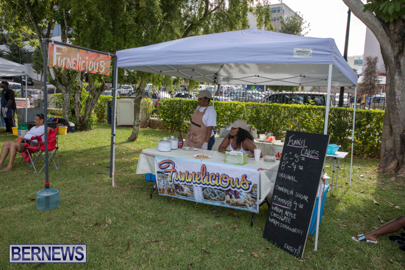 Summer-Sunday-in-the-Park-at-the-Victoria-Park-Bermuda-August-12-2018-8565