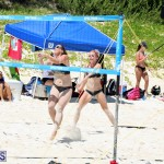 Volleyball Bermuda August 29 2018 (9)