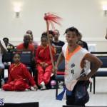 martial arts Bermuda August 22 2018 (16)
