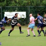 Bermuda Rugby September 15 2018 (9)