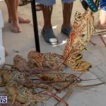 Lobster Tournament Makin Waves Goslings Bermuda, September 2 2018-3819