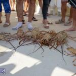 Lobster Tournament Makin Waves Goslings Bermuda, September 2 2018-3837