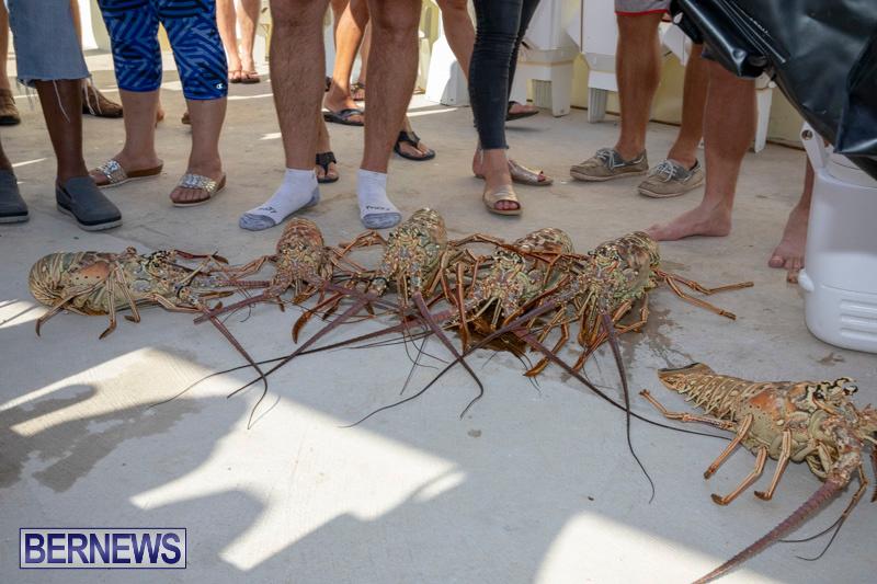 Lobster-Tournament-Makin-Waves-Goslings-Bermuda-September-2-2018-3837