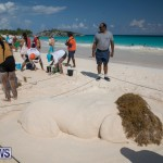 Sandcastle Competition Horseshoe Bay Bermuda, September 1 2018-2196