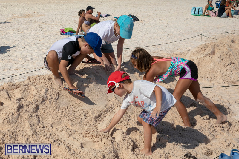 Sandcastle-Competition-Horseshoe-Bay-Bermuda-September-1-2018-2490