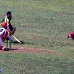 cricket Bermuda Sept 12 2018 (13)