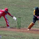 cricket Bermuda Sept 12 2018 (16)