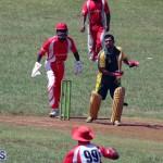 cricket Bermuda Sept 12 2018 (18)