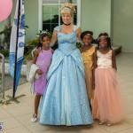 02-Tiaras Bowties daddy Daughter Dance Bermuda 2017 (68)