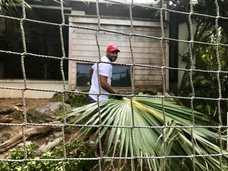 Allied World Community Day Bermuda Oct 2018 (7)