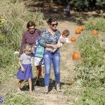J&J's Pick Your Own Pumpkin Bermuda Oct 12 2018 (32)