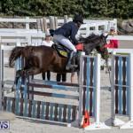 Stardust Jumper Series Bermuda, October 27 2018-0268