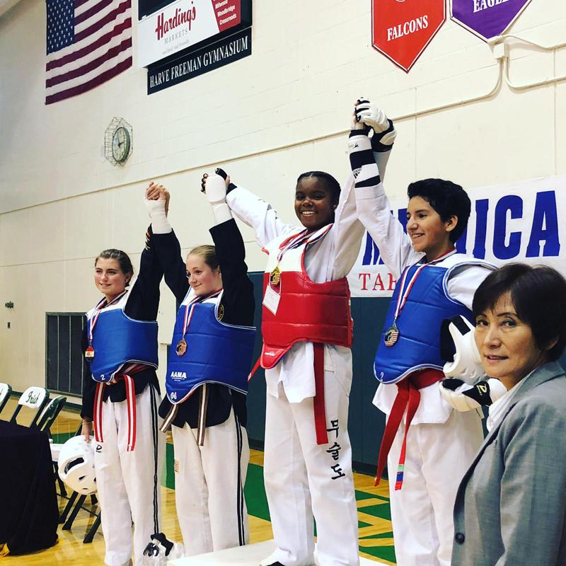Taekwondo Bermuda October 2018 (4)