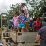 Wadsons Farms Pumpkin Picking Event Bermuda, October 20 2018 (16)