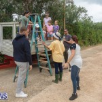 Wadsons Farms Pumpkin Picking Event Bermuda, October 20 2018 (18)
