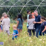 Wadsons Farms Pumpkin Picking Event Bermuda, October 20 2018 (23)