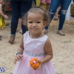 Wadsons Farms Pumpkin Picking Event Bermuda, October 20 2018 (34)