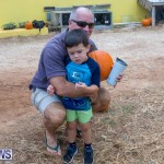 Wadsons Farms Pumpkin Picking Event Bermuda, October 20 2018 (6)