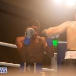 Bermuda Boxing Nikki Bascome Nov 2018 JM (10)