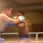Bermuda Boxing Nikki Bascome Nov 2018 JM (16)