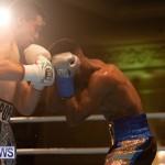 Bermuda Boxing Nikki Bascome Nov 2018 JM (18)
