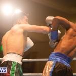 Bermuda Boxing Nikki Bascome Nov 2018 JM (20)