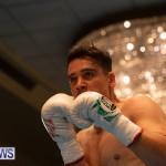 Bermuda Boxing Nikki Bascome Nov 2018 JM (3)