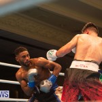 Bermuda Boxing Nikki Bascome Nov 2018 JM (42)