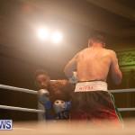 Bermuda Boxing Nikki Bascome Nov 2018 JM (59)