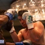 Bermuda Boxing Nikki Bascome Nov 2018 JM (75)