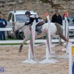 Bermuda Equestrian Federation Jumper Show, November 24 2018-0013