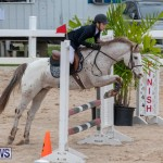 Bermuda Equestrian Federation Jumper Show, November 24 2018-0016