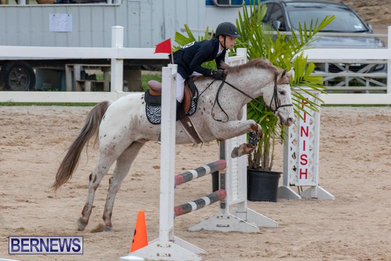Bermuda-Equestrian-Federation-Jumper-Show-November-24-2018-0016