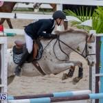 Bermuda Equestrian Federation Jumper Show, November 24 2018-0021