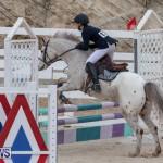 Bermuda Equestrian Federation Jumper Show, November 24 2018-0025