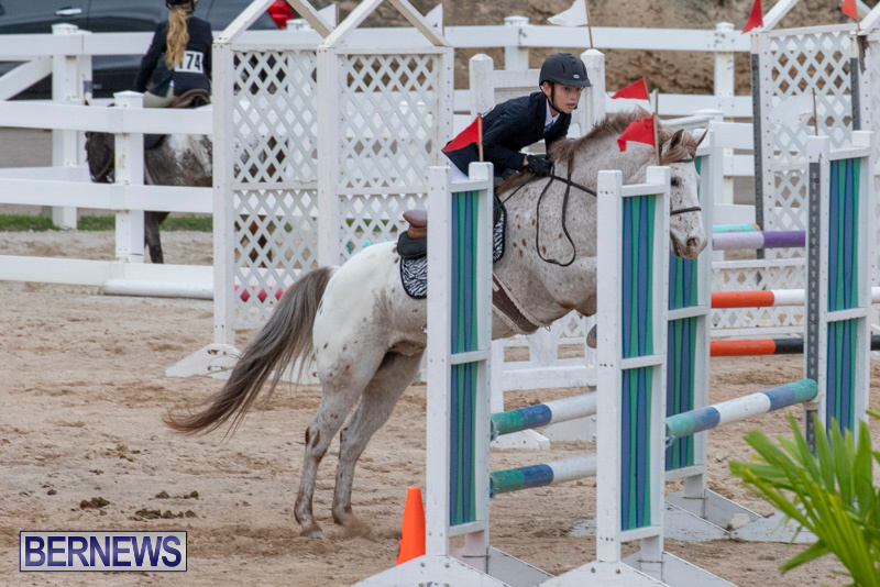 Bermuda-Equestrian-Federation-Jumper-Show-November-24-2018-0032