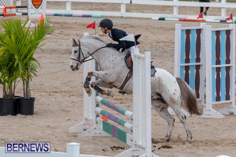 Bermuda-Equestrian-Federation-Jumper-Show-November-24-2018-0038