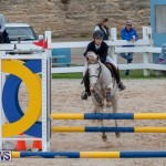 Bermuda Equestrian Federation Jumper Show, November 24 2018-0042