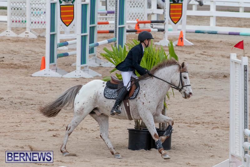 Bermuda-Equestrian-Federation-Jumper-Show-November-24-2018-0057