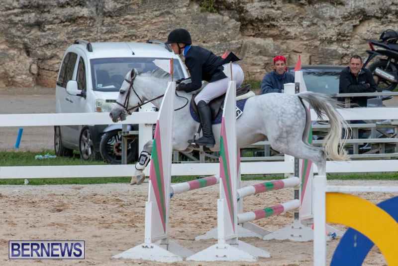 Bermuda-Equestrian-Federation-Jumper-Show-November-24-2018-0067
