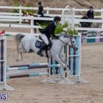 Bermuda Equestrian Federation Jumper Show, November 24 2018-0082
