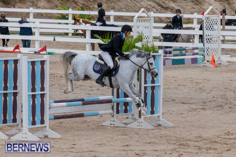Bermuda-Equestrian-Federation-Jumper-Show-November-24-2018-0082
