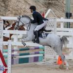 Bermuda Equestrian Federation Jumper Show, November 24 2018-0086