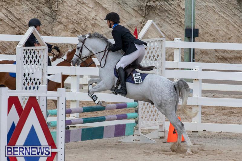 Bermuda-Equestrian-Federation-Jumper-Show-November-24-2018-0086
