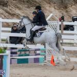 Bermuda Equestrian Federation Jumper Show, November 24 2018-0089