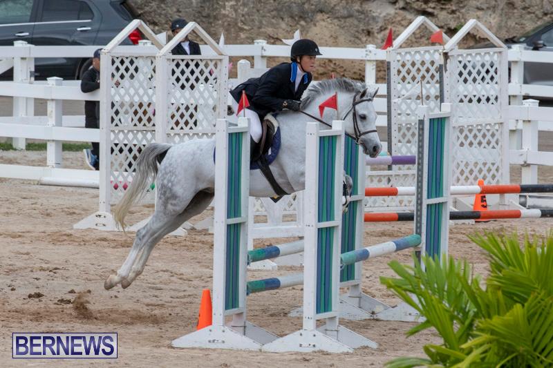 Bermuda-Equestrian-Federation-Jumper-Show-November-24-2018-0096