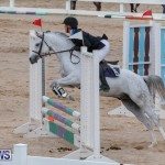 Bermuda Equestrian Federation Jumper Show, November 24 2018-0103