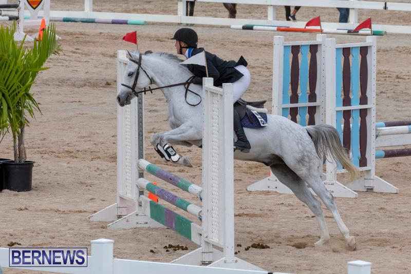 Bermuda-Equestrian-Federation-Jumper-Show-November-24-2018-0103